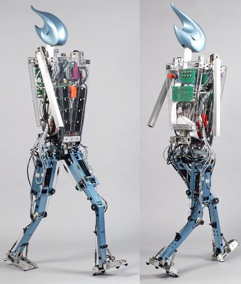 delft_biped_humoid_robot