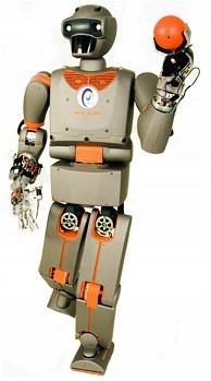 reemb_humanoid_robot