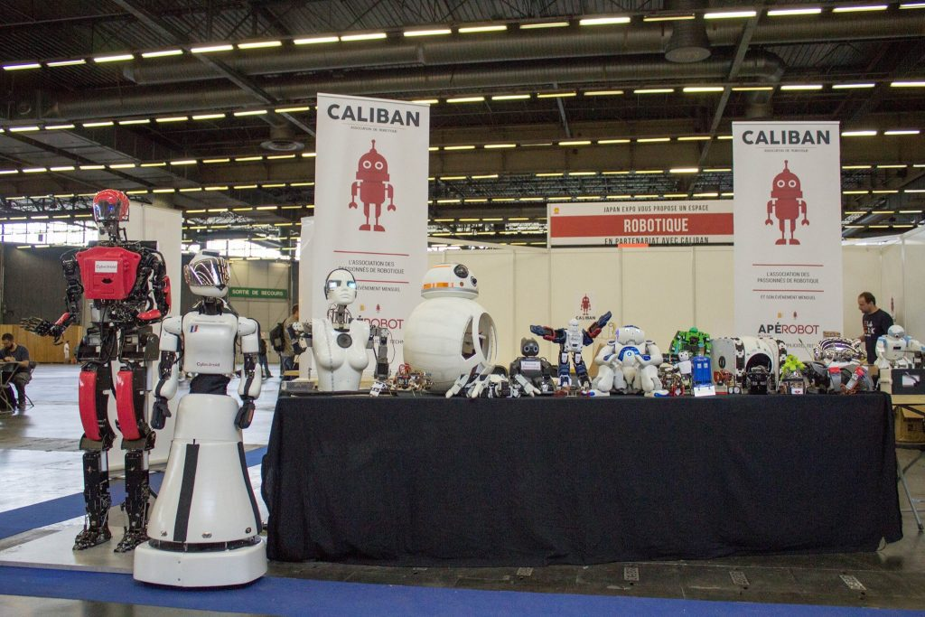 Caliban DIY Robot: BB8, Nao Cybdoid